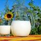 milk pitcher resized blog