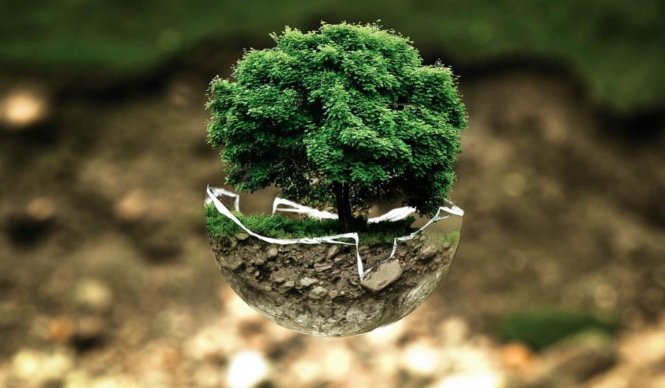 environmental-protection-683437_1280