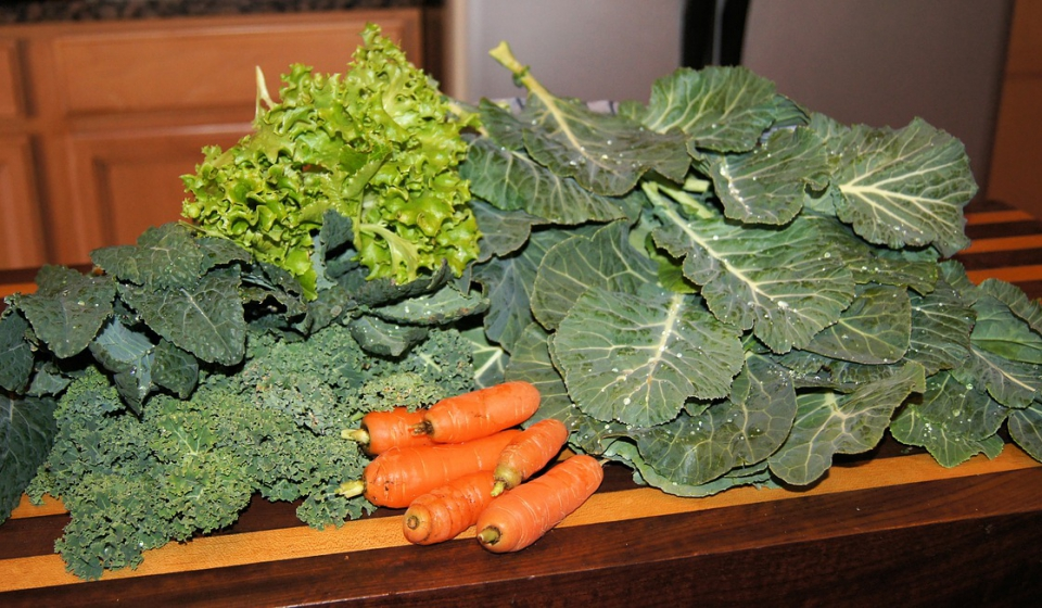 greens for blog