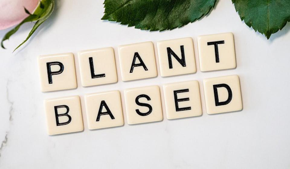 plant based tiles