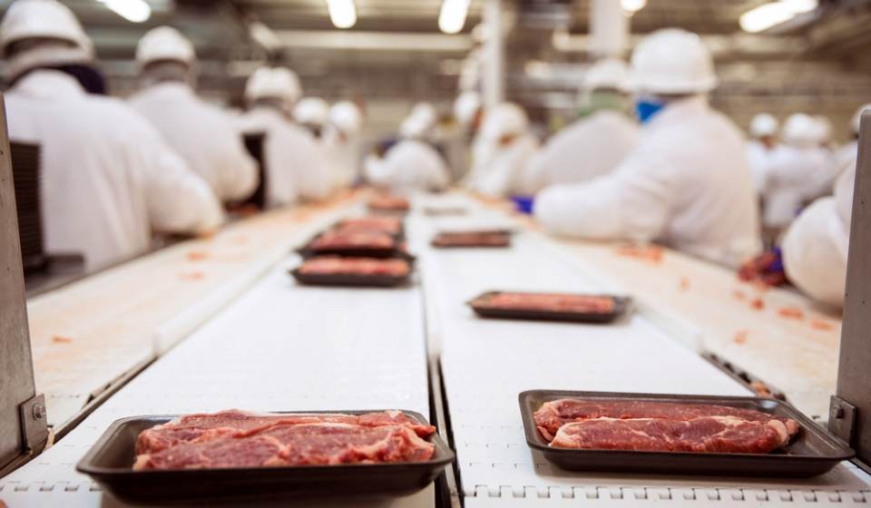 factory meat and workers